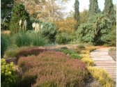 Dendrologická zahrada v Průhonicích