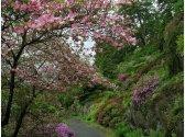 Průhonický park (UNESCO)
